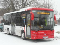 ziema autobusas babtuose